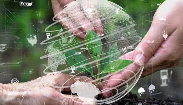 Green data centres: The key to driving sustainable strategies