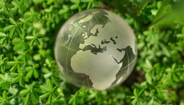 Exploring the possibilities of 'green data centres'